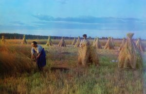 At the stubble-field - 1909