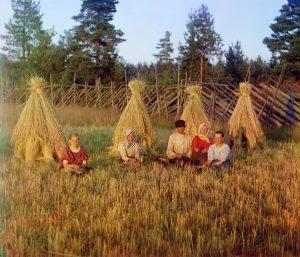 At the stubble-field by Sergey Prokudin Gorsky - 1909